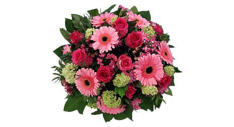 Wann sind Rosen als Geschenk angebracht?