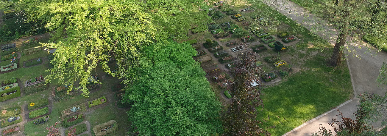 ostfriedhof-gelsenkirchen-grabpflege